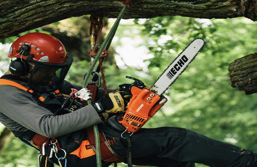 Best Echo Chainsaw Reviews and Buying Guide